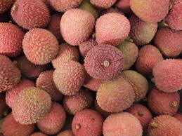 fruit similar to lychee the fine food wholesale supplier the fine food company