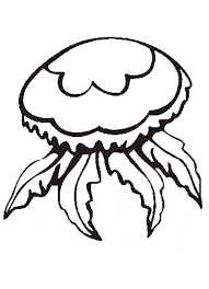 free coloring pages jellyfish jellyfish coloring page animals town free jellyfish color sheet
