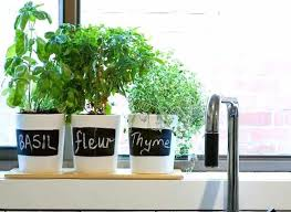 Window Sill Herb Garden Designs Kitchen Window Herbs Small Herb Garden Design Kitchen Windowsill