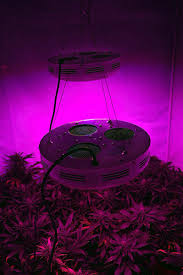 ufo led grow light epic ufo led grow lights f51 in modern image collection with ufo led