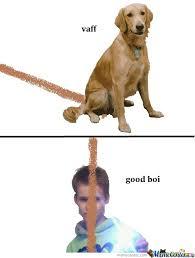 Dog Lover Meme - dog lover moeslund by eigilgiller meme center