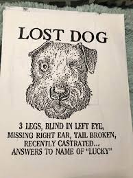Lost Dog Meme - 19 awesome hardcopy memes from the long lost age before the internet