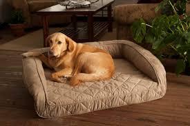 Foam Dog Bed Buddy Beds Luxury Memory Foam Sofa Dog Bed U0026 Reviews Wayfair