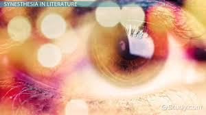 didactic literature definition u0026 examples video u0026 lesson