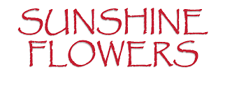 flower delivery dallas dallas florist flower delivery by flowers greenhouse