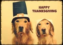 happy thanksgiving the money master