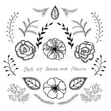 Wedding Flowers Drawing Vector Floral Set Graphic Collection With Leaves And Flowers