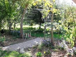 wedding arches bunnings trellis arch newbedroom club