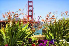 San Francisco Flower Garden by San Francisco Garden Club