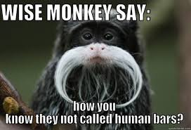 Funny Monkey Meme - 35 most funny monkey meme pictures and images