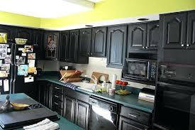 dark kitchen cabinets white kitchen cabinets with black stainless