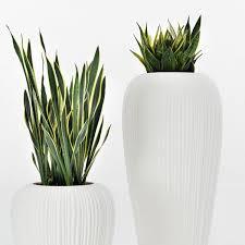 vasi da interno vaso da esterno skin myyour vasi da giardino complementi d