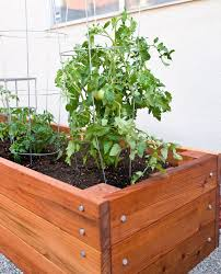 large redwood planter box for tomatoes diy projects pinterest