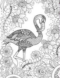 free printable coloring pink flamingo bird