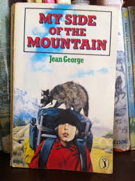 the other side of the mountain books anonymous my side of the mountain jean george