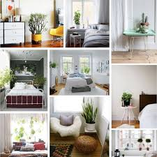 Best Plants For Bedroom 197 Best Bedroom Plants Images On Pinterest Bedroom Plants