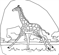 ideal baby giraffe coloring pages imagine superb coloring