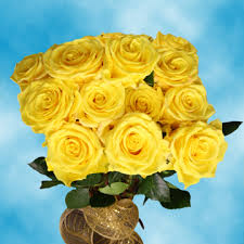 cheap roses light yellow roses send roses online cheap roses free delivery