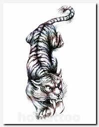 saber tooth tiger designs skin arts
