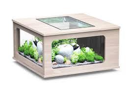 wohnideen minimalistischen aquarium couchtisch aquarium die einzigartige möbel für wohnzimmer ideen