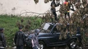 cyclone enawo dead madagascar bbc