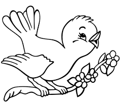birds to color coloring pages fish and bird for pictures of