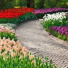 garden planning and design advice tips and resources notcutts
