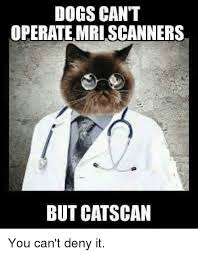 Scanners Meme - dogs can t operate mri scanners but catscan you can t deny it meme