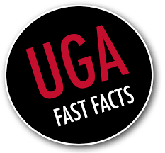 advice about the uga admission process review process