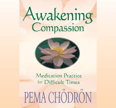 amazon com awakening compassion meditation practice for