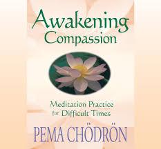 amazon com awakening compassion meditation practice for