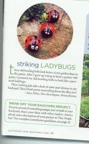 How To Find Ladybugs In Your Backyard Ladybug Bowling Balls
