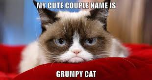 Cute Couple Meme - my cute couple name is grumpy cat lolcats lol cat memes