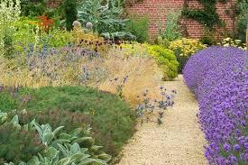 Garden Pics Ideas Plant Combination Ideas Garden Style Mediterranean Garden