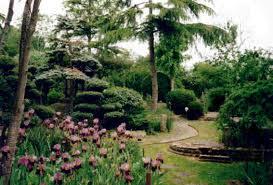 Chinese Garden Design Decorating Ideas Chinese Garden Design For Small Spaces The Garden Inspirations