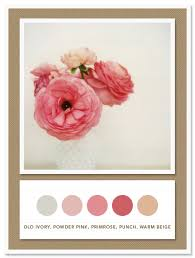 colour palette old ivory powder pink primrose punch warm