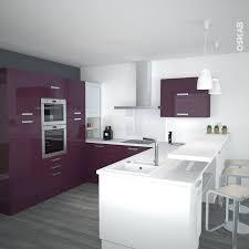 cuisine mur aubergine cuisine mur aubergine cuisine aubergine et blanche implantation en