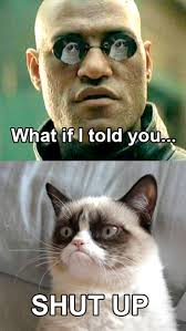 Meme What If I Told You - what if i told you grumpy cat know your meme