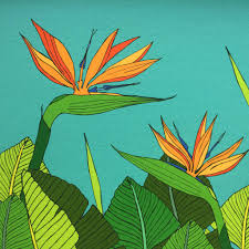 bird of paradise flower tropical bird of paradise flower print by made by ilze