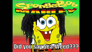 Funny Spongebob Memes - funny spongebob memes youtube