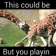 Meme Giraffe - giraffe sex quickmeme