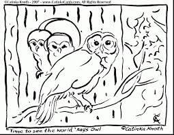 halloween owl coloring pages fun coloring pages