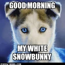 Good Morning Sunshine Meme - 20 adorable and cute good morning memes sayingimages com
