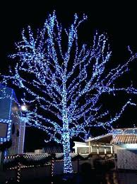 white tree with lights how to wrap a tree with lights lights wraps and lights outdoor tree