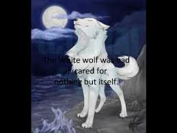 the black wolf and the white wolf part 1