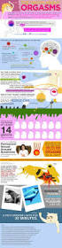 28 best sexy sci tech images on pinterest infographics fun the truth about orgasms fun facts and stats you need to know