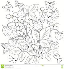 coloring page flowers and strawberry in the vase illustration