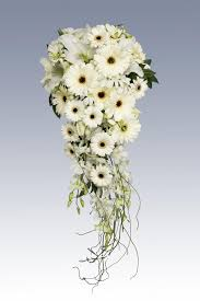wedding flowers quote form white gerbras in a teardrop style bouquet wedding bouquets