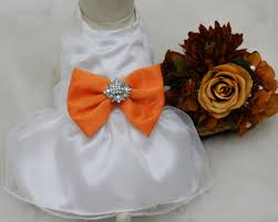 pale orange dog dress dog birthday gift orange pet wedding