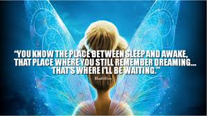 tinkerbell image quotes wallpaper simplepict